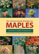 An Illustrated Guide to Maples (Illustrated Guides)