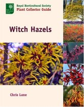 Witch Hazels (Royal Horticultural Society Plant Collector Guide)