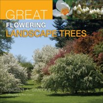 Great Flowering Landscape Trees