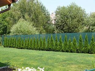 Sloupky plot