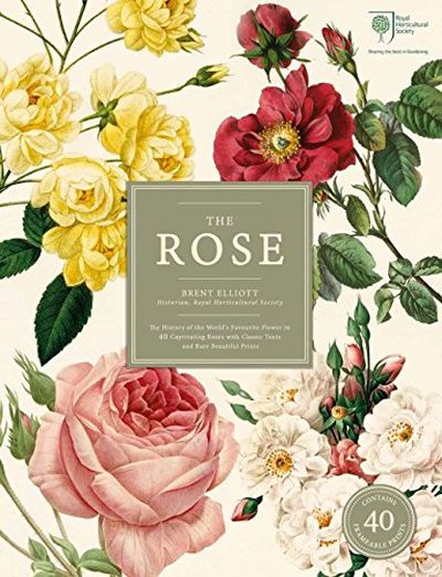The Rose: The History of the World's Favourite Flower