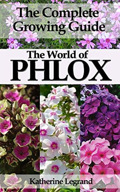 The World of Phlox