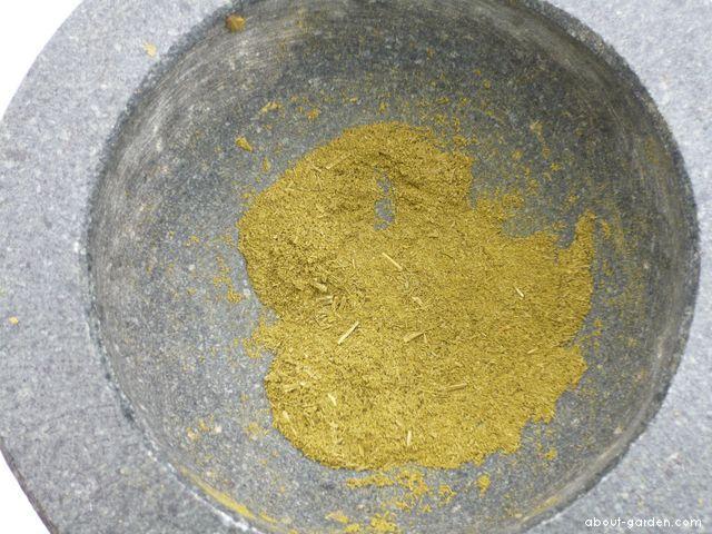 Jinan dvoulaločnatý, prášek z listů (Ginkgo biloba)