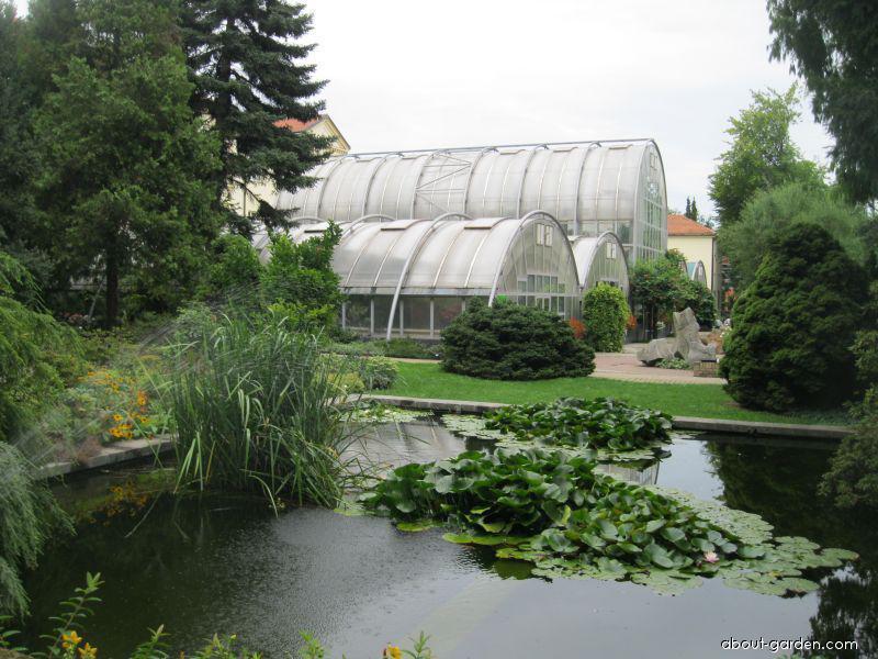 Venkovní expozice botanické zahrady Přírodovědecké fakulty v Brně